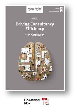 Download Consultancy Efficiency report PDF
