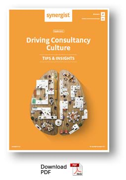 Download Consultancy Culture report PDF